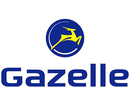 Gazelle_Klundert